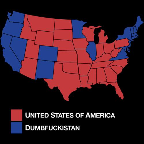 Dumbfuckistan TShirt - Tee shirt us map dumbfuckistan
